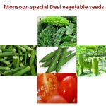 Monsoon special Desi vegetable seeds