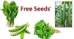 free seeds agriculturemart