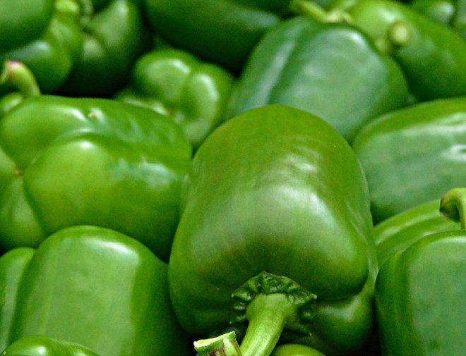 Capsicum green – Desi Seeds