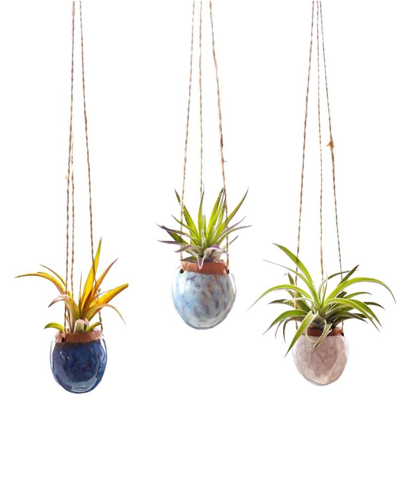 hanging-pot